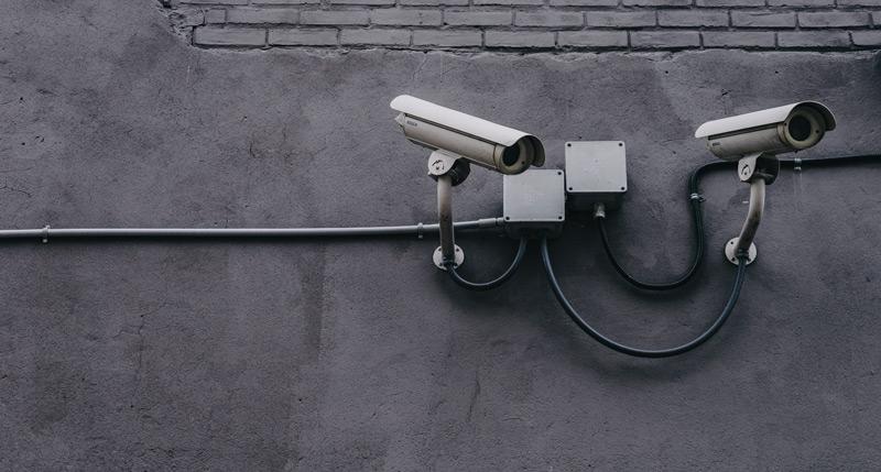 lex servizi sicurezza